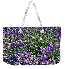 Weekender Tote Bag featuring the photograph Lavender Herb  by Sharon Duguay