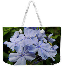 Weekender Tote Bag featuring the photograph Lavender Raindrops by Kristine Merc
