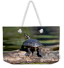 Lazy Day On A Log 6241 Weekender Tote Bag