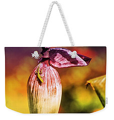 Weekender Tote Bag featuring the photograph Lazy Lizard by The Art of Alice Terrill