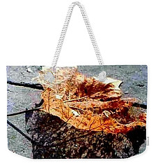 Weekender Tote Bag featuring the photograph Leaf Lace In New Orleans Louisiana by Michael Hoard