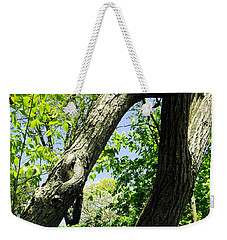 Weekender Tote Bag featuring the photograph Lean On Me by Robyn King