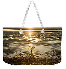 Weekender Tote Bag featuring the photograph Leftover Bouquet by Carol Lynn Coronios