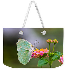 Lemon Emigrant Butterfly Weekender Tote Bag