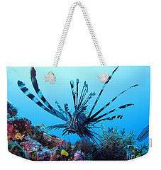 Weekender Tote Bag featuring the photograph Leon Fish by Sergey Lukashin