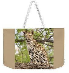 Leopard Cub Gaze Weekender Tote Bag