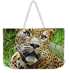 Leopard Face Weekender Tote Bag by Clare Bevan