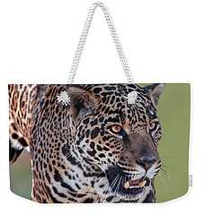 Jaguar Walking Portrait Weekender Tote Bag