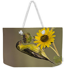 Lesser Goldfinch On Sunflower Weekender Tote Bag