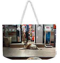 Weekender Tote Bag featuring the photograph Let Sleeping Dogs Lie Where They May by Mr Photojimsf