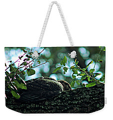 Let Sleeping Hawks Lie Weekender Tote Bag