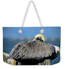 Let Sleeping Pelicans Lie Weekender Tote Bag