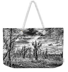 Weekender Tote Bag featuring the photograph Levy Lake by Howard Salmon
