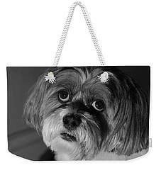 Weekender Tote Bag featuring the photograph Lhasa Puppy Cut by Arthur Fix