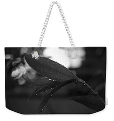 Weekender Tote Bag featuring the photograph Light And Dark by Miguel Winterpacht