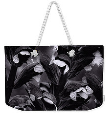 Light In The Dark Weekender Tote Bag by Edgar Laureano