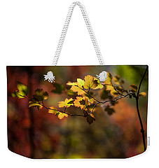 Weekender Tote Bag featuring the photograph Lightly Falling by Aaron Aldrich