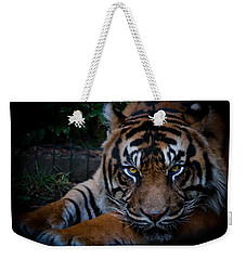 Like My Eyes? Weekender Tote Bag