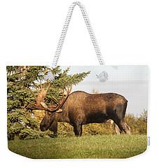 Like My Rack Weekender Tote Bag