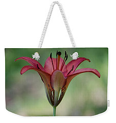 Lillium Philadelphicum Weekender Tote Bag