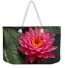 Lily Flower In Bloom Weekender Tote Bag by Michael Porchik