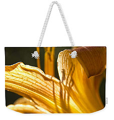 Weekender Tote Bag featuring the photograph Lily In The Yard by Daniel Sheldon