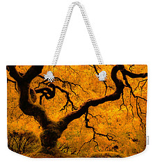 Limned In Light Weekender Tote Bag by Don Schwartz