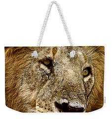 Lion 01 Weekender Tote Bag by Wally Hampton