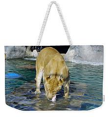 Lion 3 Weekender Tote Bag