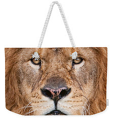 Lion Close Up Weekender Tote Bag by Jerry Fornarotto