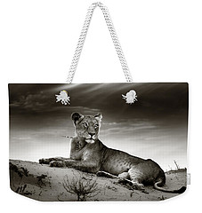 Lioness On Desert Dune Weekender Tote Bag