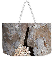 Lions Tail Carlsbad Caverns National Park Weekender Tote Bag