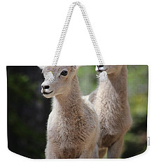 Little Bighorns Weekender Tote Bag