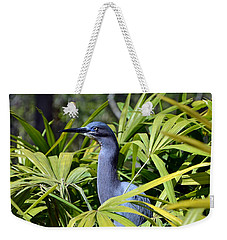 Weekender Tote Bag featuring the photograph Little Blue Heron by Robert Meanor