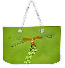 Weekender Tote Bag featuring the photograph Little Bugger by Greg Norrell