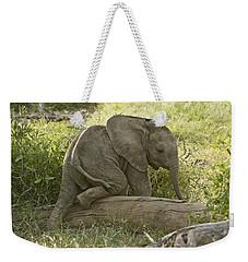 Little Elephant Big Log Weekender Tote Bag