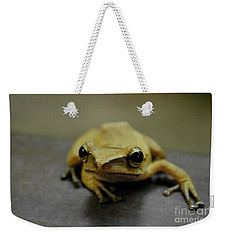 Weekender Tote Bag featuring the photograph Little Frog by Michelle Meenawong