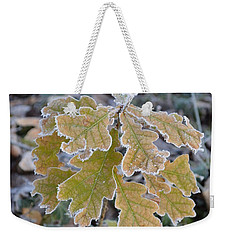 Weekender Tote Bag featuring the photograph Little Oak by Felicia Tica