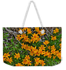 Weekender Tote Bag featuring the photograph Little Sunflower In The Mountains by Janice Rae Pariza