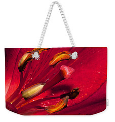 Living Inside A Lily Weekender Tote Bag by Phyllis Denton