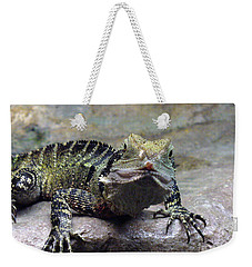 Weekender Tote Bag featuring the photograph Lizzie's Gaze by Lingfai Leung