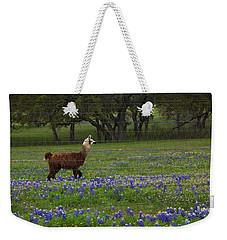 Llama In Bluebonnets Weekender Tote Bag