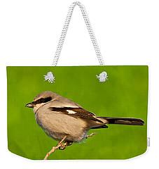 Loggerhead Shrike Weekender Tote Bag
