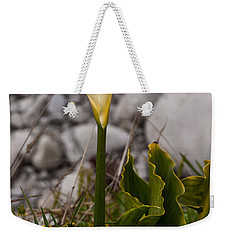 Lone Calla Lily Weekender Tote Bag by Melinda Ledsome