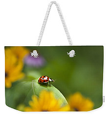Weekender Tote Bag featuring the photograph Lonely Ladybug by Christina Rollo