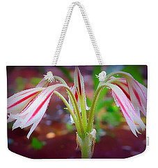 Weekender Tote Bag featuring the photograph Lonely Lilly by Debra Forand