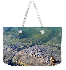 Weekender Tote Bag featuring the photograph Lonely Shell by Patricia Greer