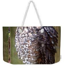 Weekender Tote Bag featuring the photograph Long Eared Owl by Joseph Skompski