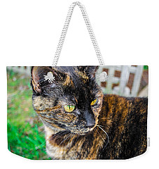 Weekender Tote Bag featuring the photograph Look At Me by Naomi Burgess