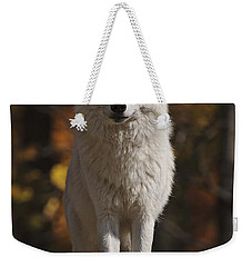 Weekender Tote Bag featuring the photograph Look Out by Wolves Only